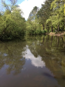 Pollok Park pond
