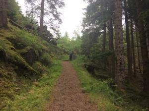 loch ard forest walk